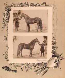 Zavoda g. Syrychana. (two imag... Digital ID: 1232343. New York Public Library