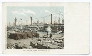 On the Levee, New Orleans, La. Digital ID: 66323.                                     New York Public Library