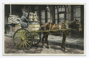 Milk Cart, New Orleans, La. Digital ID: 69699. New York                                     Public Library
