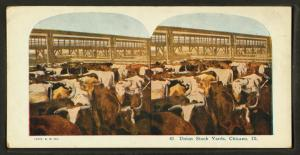 Union Stock Yards [stockyards]... Digital ID: g90f177_004f. New York Public Library