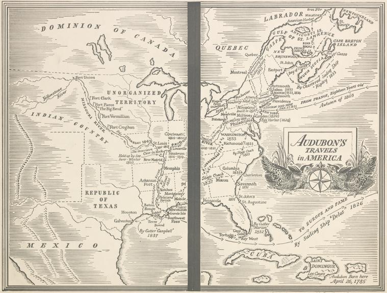?t=w&id=psnypl map 291