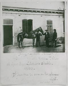 """Fancy"" or ""Little Sorrel,"" ""Stonewall"" Jackson's horse, taken at Govn. Jno. Letcher's stable, 1863 ...."