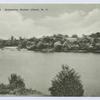 Brady's Pond, Grasmere, Staten Island, N.Y.