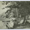Brook's Pond, West Brighton, Staten Island, N.Y. [people in canoe on lake shore]