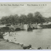 Bathing at the New Dam, Martling's Pond, West Brighton, Staten Island, N.Y.  [people swimming at the dam]