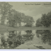 The Lily Pond, Rosebank, Richmond Borough, N.Y.