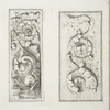 Two images of acanthus leaves]