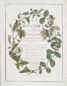 La botanique mise à la porteé de tout le monde; ou, Collection des plantes d'usage dans la médecine, dans les alimens et dans les arts