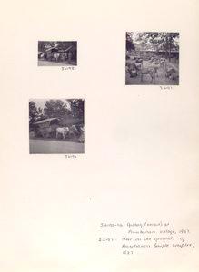J2195-96 - Grobag (oxcart) at Prambanan village, 1937; J2197 - Deer on the grounds of Prambanan temple complex, 1937.