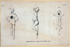 [Three views of Mexican pipes, one in shape of human, one in shape of frog.]