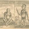 Man - ape from Angola ; Chimpanzi from Angola
