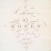 A collection of roses from nature. [Title page]