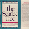 The scarlet tree.