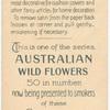 Acacia longifolia (Sydney Golden Wattle).