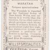 Waratah (Telopea speciosissima).