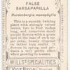 False Sarsaparilla (Hardenbergia monophylla).