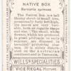 Native Box (Bursaria spinosa).