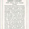 Green Canary.