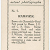 Rampion. Trainer F. Williams.