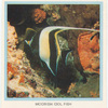 Moorish Idol Fish.