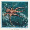Reef Octopus.