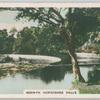 Berwyn. Horseshoe Falls.