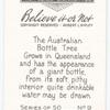 The Australian bottle tree