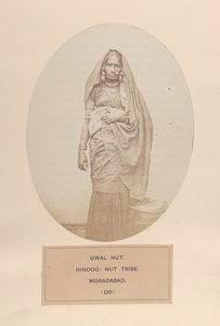 Gwal Nut, Hindoo, Nut tribe, Moradabad.