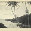 Coast scenery.