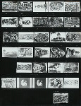 Indonesia. Contact prints