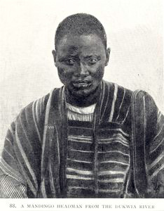 A Mandingo headman from the Dukwia River.