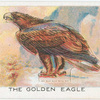 The Golden Eagle.