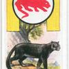 Panther.