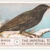 Starling.