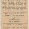 Tasmanian Wallaby.