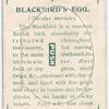 Blackbird's egg.