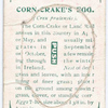Corn-crake's egg.