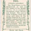 Wood pigeon.