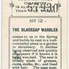 The blackcap warbler.