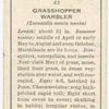 Grasshopper warbler (female).