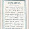 Town arms, Cambridge.
