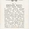 Westland Wapiti.