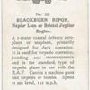Blacburn Ripon.