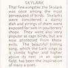 Skylark.