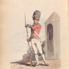 Grenadier of the 1st Regiment of Guards.