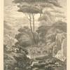 Cerfs à la fontaine (publiée dans l'Artiste).]