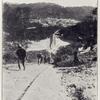 A gold mining settlement: Western Gold Coast.