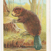 The beaver.