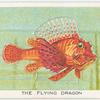 The flying dragon.
