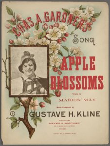 Apple blossoms / words by Marion May ; music composed by Gustave H. Kline.